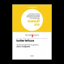 Butter Lettuce